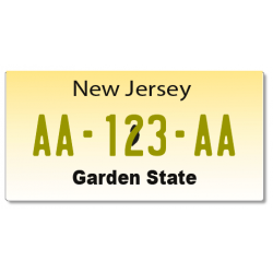 Plaque US PLEXIGLAS® 300x150mm - New Jersey